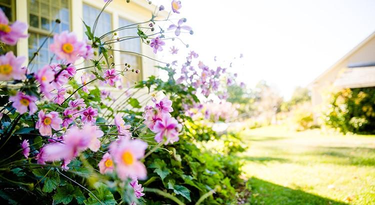 Spring Housing Market Blog